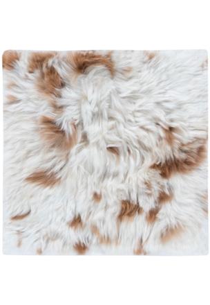 Suri Alpaca - 81951