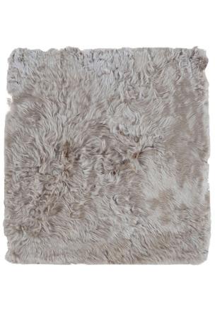 Suri Alpaca - 83256